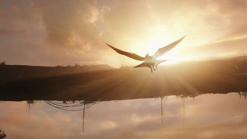 Ikran fly